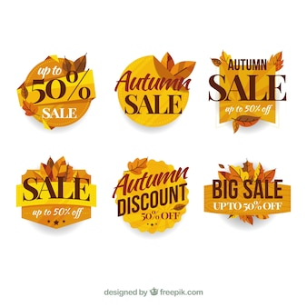 Lovely set of autumn sale labels with flat design