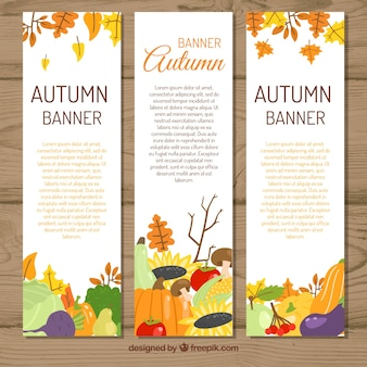 Lovely set of hand drawn autumn banners