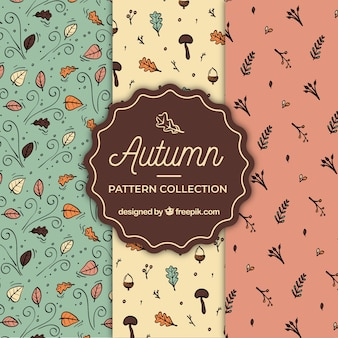 Lovely set of hand drawn autumn patterns