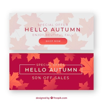 Lovely set of autumn banners with realistic design