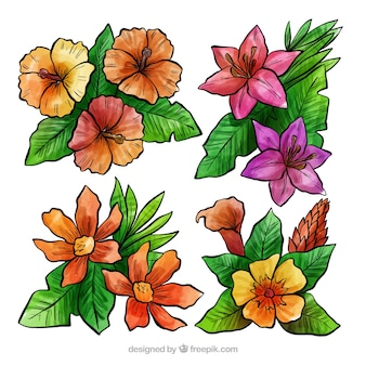Lovely set of watercolor tropical flowers