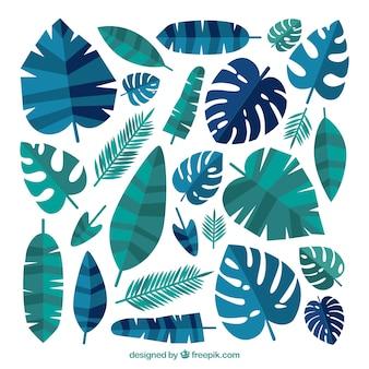 Bella collezione di foglie tropicali con design piatto