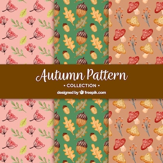 Lovely watercolor autumnal patterns