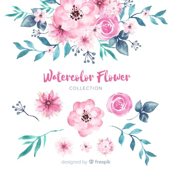 Lovely watercolor flowers collection