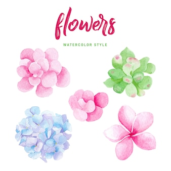 Lovely watercolor flowers