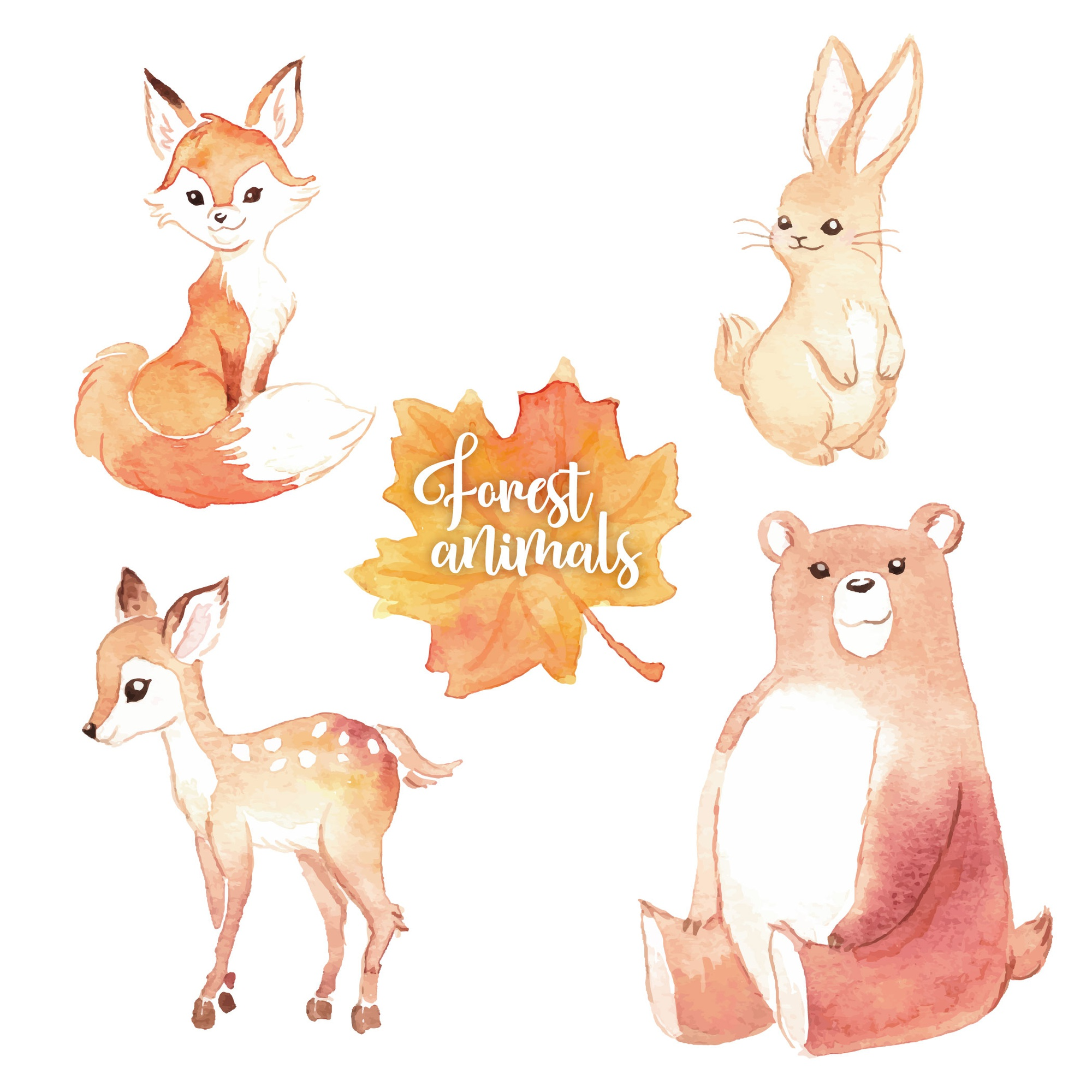 Lovely watercolor forest animals