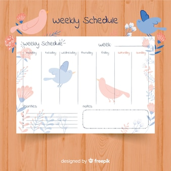 Lovely weekly schedule template with colorful style