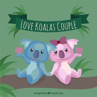 Loving koalas couple