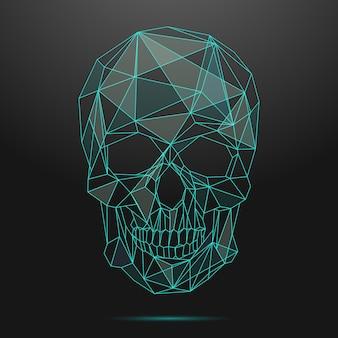 낮은 폴리 두개골. 얇은 선 해골. 두개골 선형, 낮은 폴리 머리 두개골, 모양 기하학적 라인 두개골 그림
