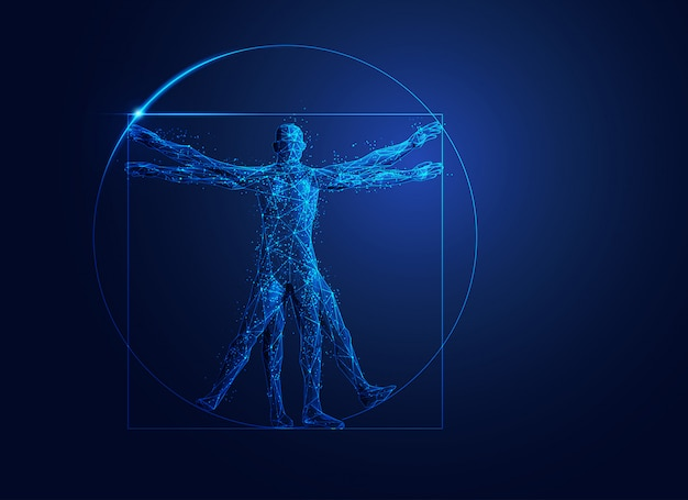 Low poly vitruvian man