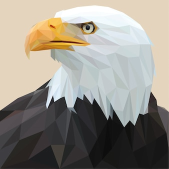 Lowpoly of american eagle