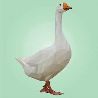 Lowpoly art of white duck