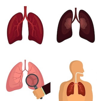 Lung organ human breathing icons set vector isolated