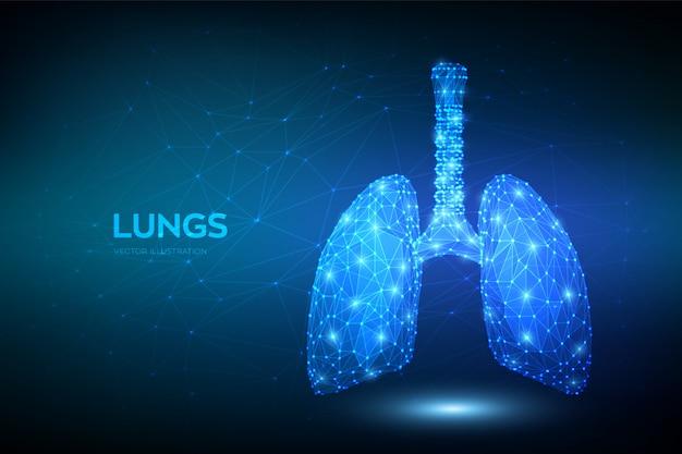 肺。低多角形人間の呼吸器系の肺の解剖学。肺疾患の治療。薬は結核、肺炎、喘息を治します。