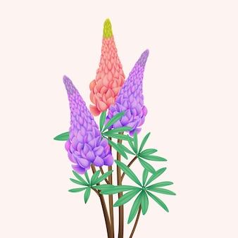 Lupine flower vector