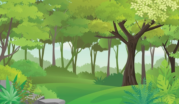 Lush forest illustration