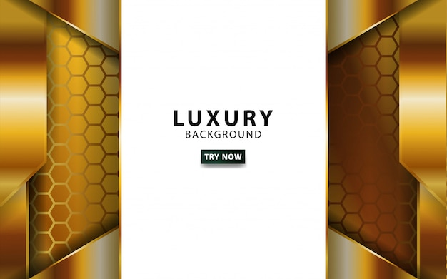 Luxury abstract gold vector background with golden line.overlap layers with paper effect. digital template. realistic light effect on textured hexagon background.