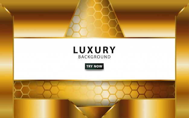 Luxury abstract gold vector background with golden line.overlap layers with paper effect. digital template. realistic light effect on textured hexagon background