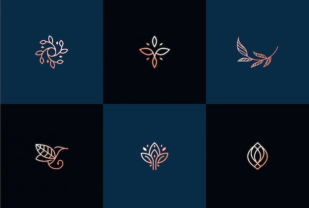 Luxury abstract leaf logo design illustration