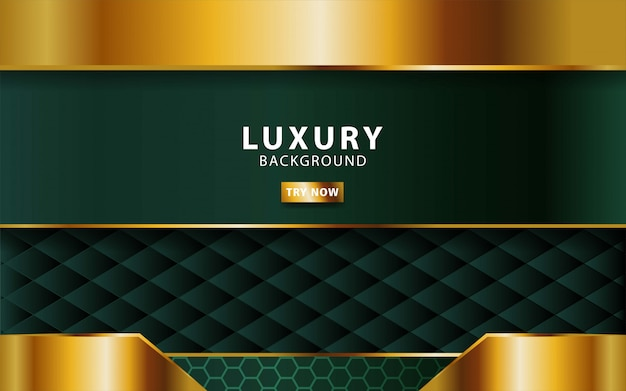 Luxury abstract premium green  background with gold line.