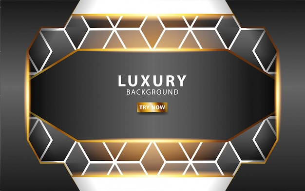 Luxury abstract premium grey vector background with gold line .overlap layers with paper effect. realistic light effect on textured  hexagon background