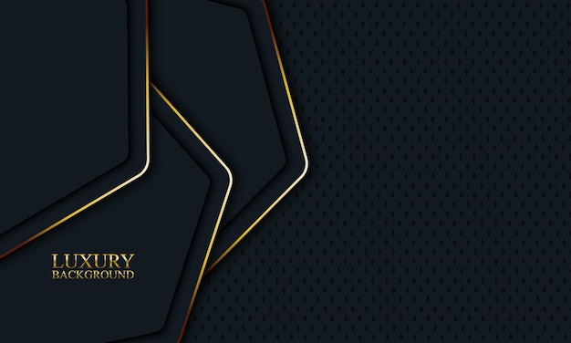 Luxury banner background with dark rounded hexagonal and golden lines. vector illustration.