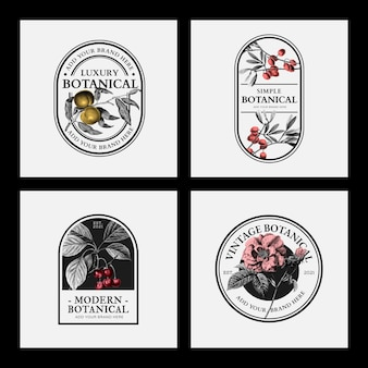 Luxury business logo badges vector vintage beauty brands collection