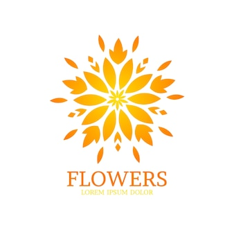 Luxury floral perfume logo collection