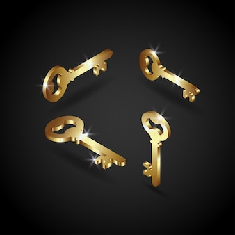 Luxury golden key vector illustration