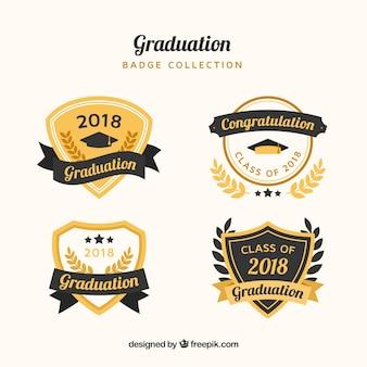 Collezione di badge di laurea di lusso