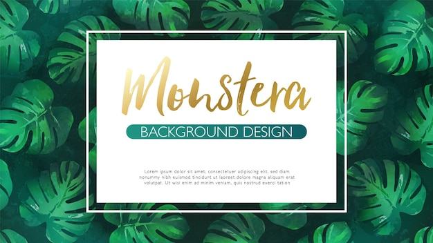 Luxury hand drawn monstera tropical leaves background with white frame