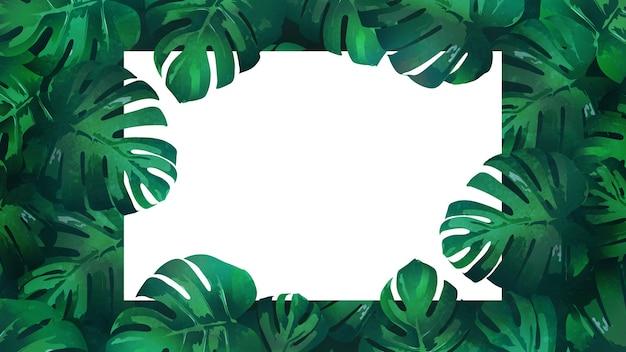 Роскошные рисованной монстера тропические листья фон с белой нотой