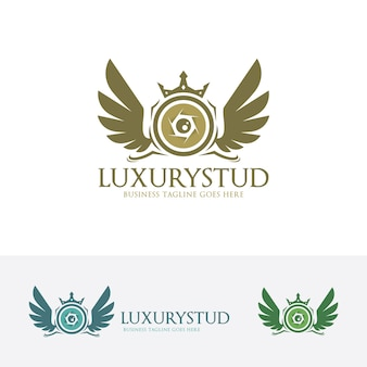 Luxury studio vector logo template