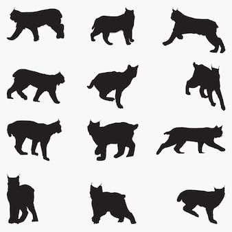 Силуэты кошек рыси