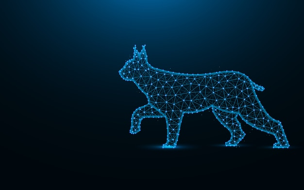 Lynx low poly design, wild cat wireframe mesh polygonal illustration made from points and lines on dark blue background