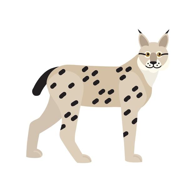 Lynxまたはボブキャットは白い背景で隔離。優雅な肉食性の猫の動物、斑点のあるコートを持つゴージャスな略奪的な哺乳類の肖像画。野生の狩猟猫。フラット漫画スタイルのベクトルイラスト。