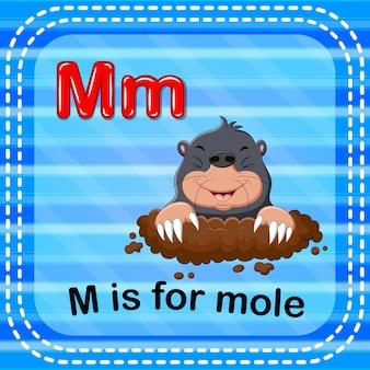 フラッシュカードの手紙mはモルに対してです