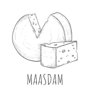 마스 담 치즈 유제품 식품 스케치 흰색 절연