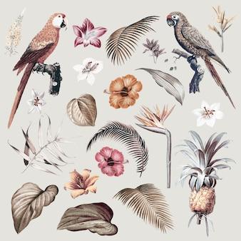Иллюстрация листвы ара
