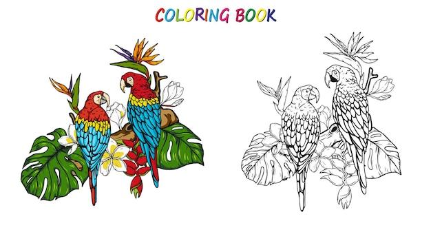 Попугай ара летом для раскраски