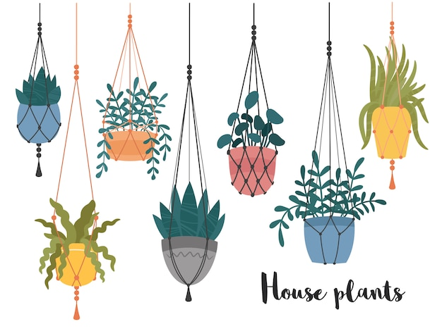 Macrame hanging plants in pots