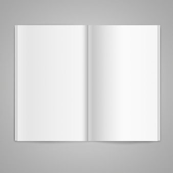 Magazine double-page spread with blank pages