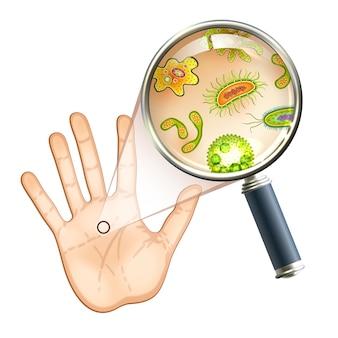 돋보기 박테리아 및 바이러스 세포