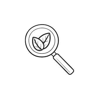 Лупа с листьями рисованной наброски каракули значок. органический поиск, поисковая оптимизация, концепция цифрового маркетинга. векторная иллюстрация эскиз для печати, интернета, мобильных устройств и инфографики на белом фоне.