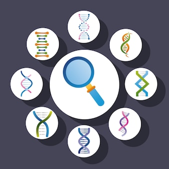 Magnifying and dna genetic icons