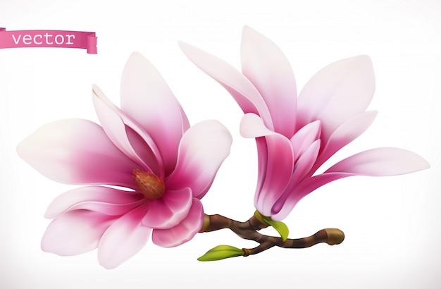 Magnolia. 3d realistic