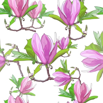 Magnolia blooms seamless pattern