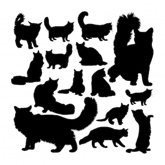 Maine coon cat animal silhouettes