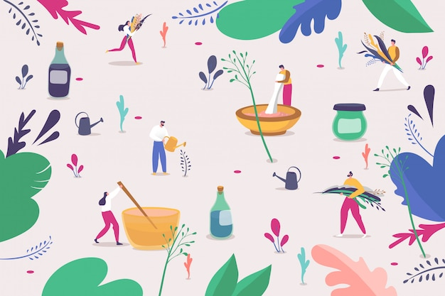 Making herbal natural cosmetic for skin care,  illustration. people character pick colorful grass and flowers, mixing plants