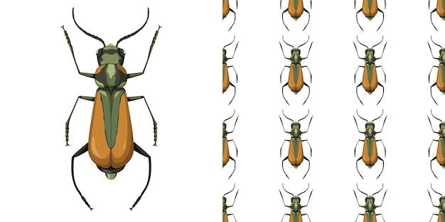 Malachius aeneus insetto e seamless pattern